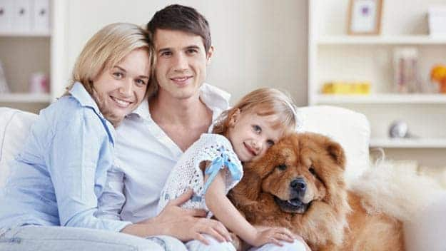 Wills & Trusts dog-young-family Direct Wills Worcester Park